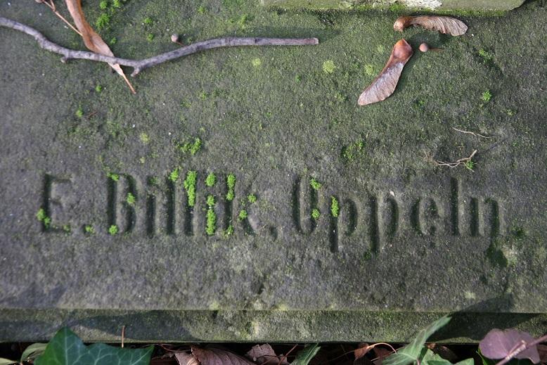 BILLIK sygnatura